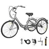 GNEGNIS Triciclo para Adultos con cestas, 20 Pulgadas 7 Marchas, Bicicleta de Triciclo Plegable con Marco de aleación - Gris Plateado